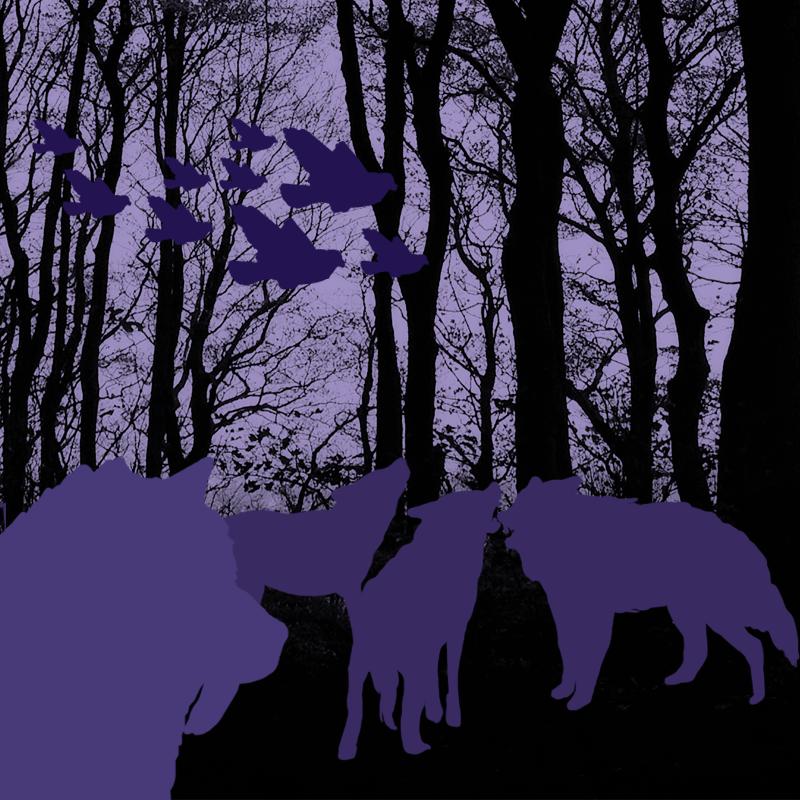 lobos-leobares-y-pajaros-aliados